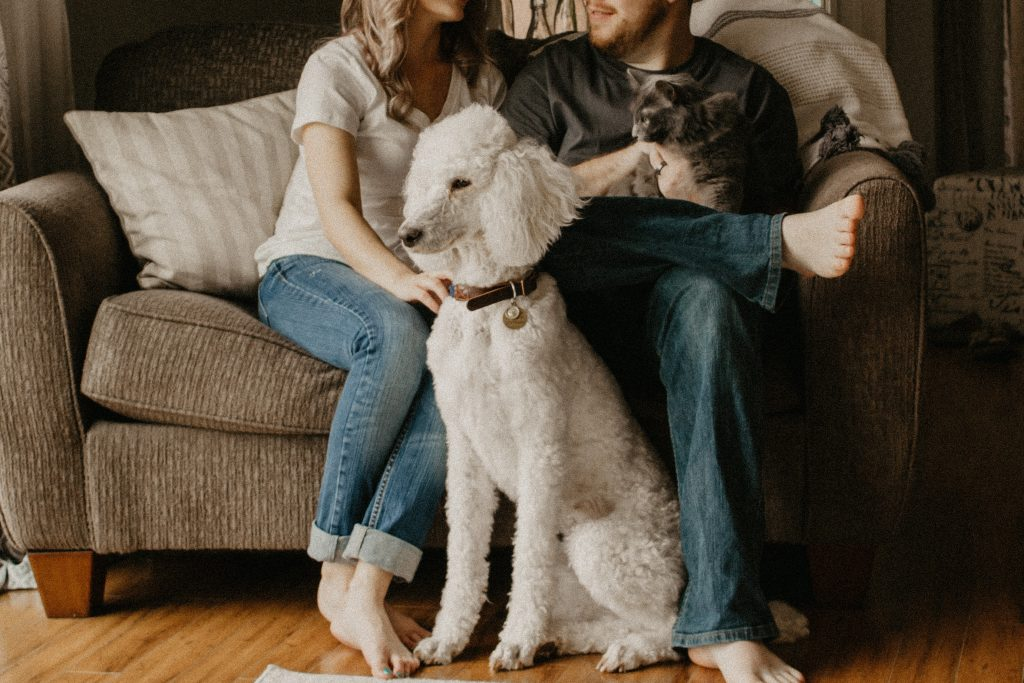 pet and family
